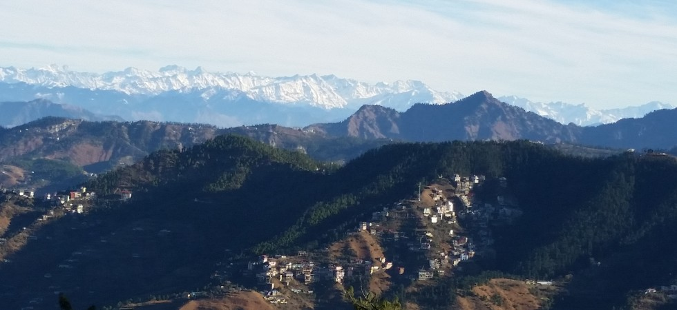 Y-Shimla in December - a view from my study room